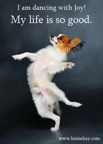 Dog Dancing with JOY!!   DancerLover.com